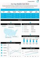 One Page Monthly Sales Sheet Presentation Report Infographic PPT PDF Document