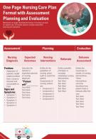 One Page Nursing Care Plan Format With Assessment Planning And Evaluation Report Infographic PPT PDF Document