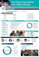 One Page Organization Fact Sheet Example Presentation Report Infographic PPT PDF Document