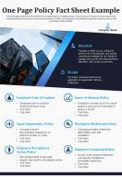 One Page Policy Fact Sheet Example Presentation Report Infographic PPT PDF Document