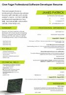 One Page Professional Software Developer Resume Presentation Report Infographic PPT PDF Document