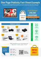 One Page Publicity Fact Sheet Example Presentation Report Infographic PPT PDF Document