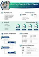 One Page Sample IT Fact Sheets Presentation Report Infographic PPT PDF Document
