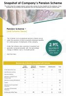 One Page Snapshot Of Companys Pension Scheme Presentation Infographic PPT PDF Document
