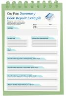 One Page Summary Book Report Example Presentation Report Infographic Ppt Pdf Document