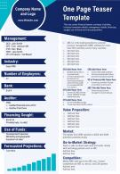 One Page Teaser Template Presentation Report Infographic PPT PDF Document