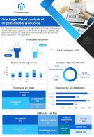 One Page Visual Analysis Of Organizational Workforce Presentation Report PPT PDF Document