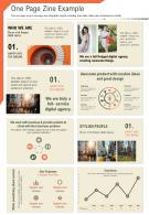One Page Zine Example Presentation Report Infographic PPT PDF Document