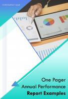 One Pager Annual Performance Report Examples PDF DOC PPT Document Report Template