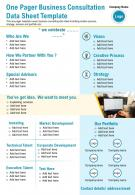 One Pager Business Consultation Data Sheet Template Presentation Report Infographic PPT PDF Document