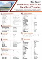 One Pager Commercial Real Estate Data Sheet Template Presentation Report Infographic PPT PDF Document