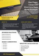 One Pager Corporate Overview Data Sheet Example Presentation Report Infographic PPT PDF Document