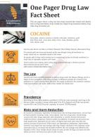 One Pager Drug Law Fact Sheet Presentation Report Infographic PPT PDF Document