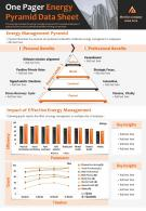 One Pager Energy Pyramid Data Sheet Presentation Report Infographic PPT PDF Document