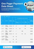 One Pager Payment Data Sheet Presentation Report Infographic Ppt Pdf Document