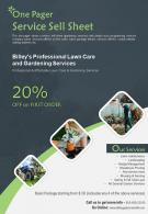 One Pager Service Sell Sheet Presentation Report Infographic PPT PDF Document