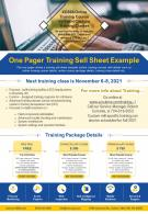 One Pager Training Sell Sheet Example Presentation Report Infographic PPT PDF Document