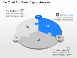 one Pie Chart For Sales Report Analysis Powerpoint Template