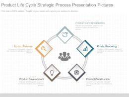 One Product Life Cycle Strategic Process Presentation Pictures
