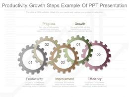 One Productivity Growth Steps Example Of Ppt Presentation