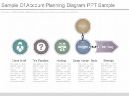 One Sample Of Account Planning Diagram Ppt Sample