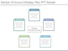 One Sample Of Account Strategy Plan Ppt Sample