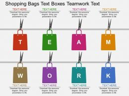 one Shopping Bags Text Boxes Teamwork Text Flat Powerpoint Design