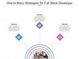 One To Many Strategies For Full Stack Developer Infographic Template