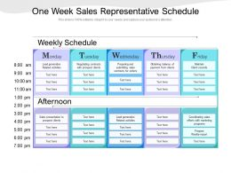 One Week Sales Representative Schedule
