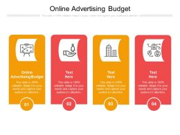 Online Advertising Budget Ppt Powerpoint Presentation Outline Design Ideas Cpb