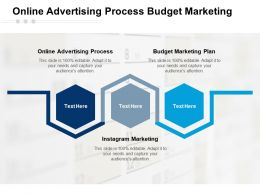 Online Advertising Process Budget Marketing Plan Instagram Marketing Cpb
