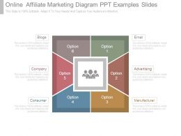 Online Affiliate Marketing Diagram Ppt Examples Slides