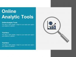 Online Analytic Tools Ppt Powerpoint Presentation Summary Display Cpb