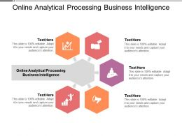 Online Analytical Processing Business Intelligence Ppt Powerpoint Presentation Styles Deck Cpb