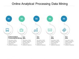 Online Analytical Processing Data Mining Ppt Powerpoint Presentation Infographic Template Slide Portrait Cpb