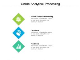 Online Analytical Processing Ppt Powerpoint Presentation Model Background Images Cpb