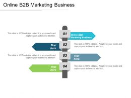 Online B2b Marketing Business Ppt Powerpoint Presentation Styles Graphics Pictures Cpb