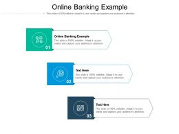 Online Banking Example Ppt Powerpoint Presentation Infographic Template Portrait Cpb