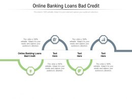 Online Banking Loans Bad Credit Ppt Powerpoint Presentation Ideas Portfolio Cpb