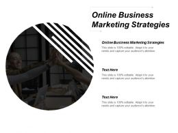 Online Business Marketing Strategies Ppt Powerpoint Presentation Gallery Introduction Cpb