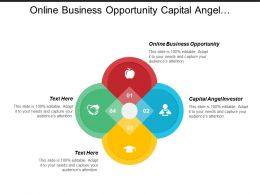Online Business Opportunity Capital Angel Investor Sales Forecasting