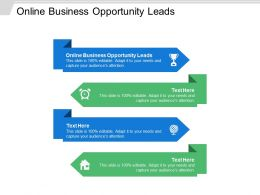 Online Business Opportunity Leads Ppt Powerpoint Presentation Ideas Show Cpb