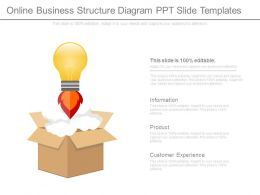 Online Business Structure Diagram Ppt Slide Templates