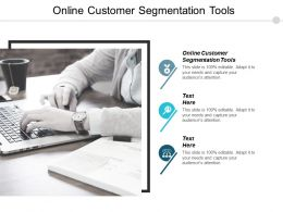 Online Customer Segmentation Tools Ppt Powerpoint Presentation Pictures Ideas Cpb