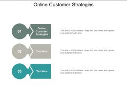 Online Customer Strategies Ppt Powerpoint Presentation Infographic Template Templates Cpb