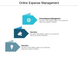 Online Expense Management Ppt Powerpoint Presentation Icon Good Cpb