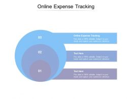 Online Expense Tracking Ppt Powerpoint Presentation Show Structure Cpb