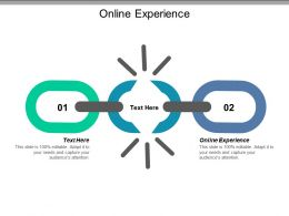 Online Experience Ppt Powerpoint Presentation Icon Samples Cpb