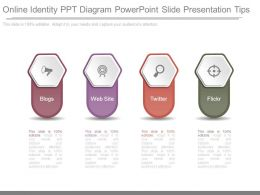 Online Identity Ppt Diagram Powerpoint Slide Presentation Tips