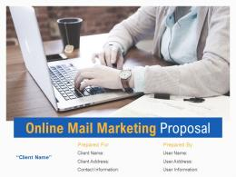 Online Mail Marketing Proposal Powerpoint Presentation Slides